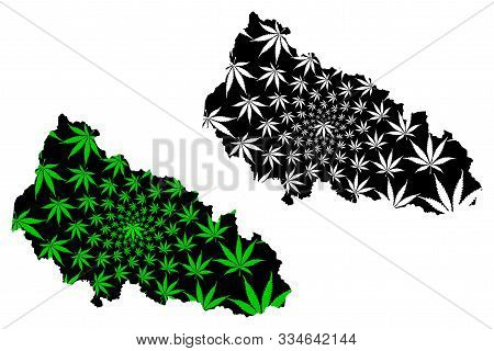 Zakarpattia Oblast (administrative Divisions Of Ukraine, Oblasts Of Ukraine) Map Is Designed Cannabi