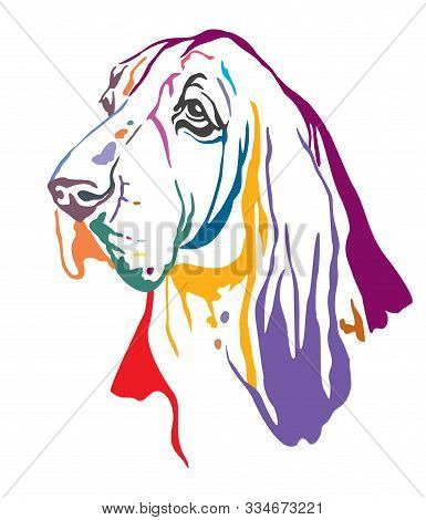 Colorful Decorative Contour Outline Portrait Of Dog Basset Hound Looking In Profile, Vector Illustra