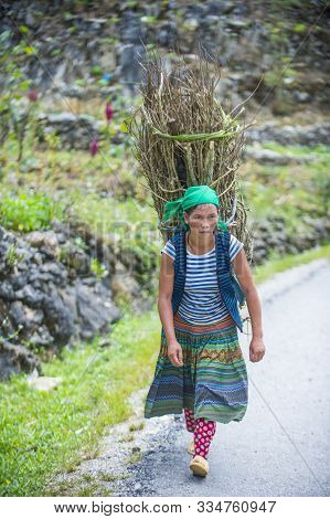 Ha Giang , Vietnam - Sep 15 : Vietnamese Farmer In A Countrside Near Ha Giang Vietnam On September 1