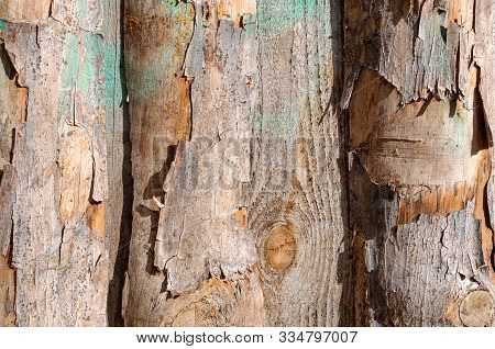 The Texture Of The Logs. Wooden Wall. Wooden Blockhouse, Fence. The Bark Is Covered With A Wooden Su