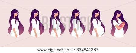 The Main Stages Of Pregnancy. Changes In The Female Body During Pregnancy Week After Week. Set For I