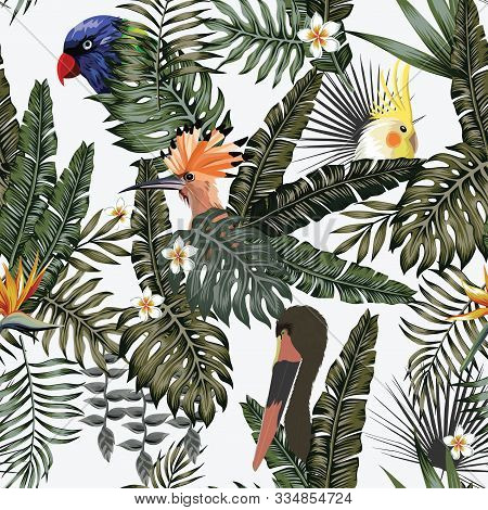 Realistic Vector Exotic Bird Parrot, Hoopoe, Stork In Tropical Jungle On White Background. Seamless