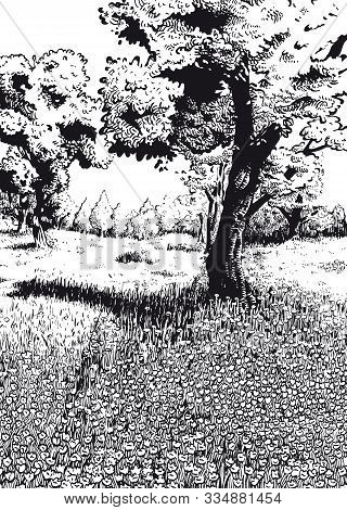 Drawing Of A Enchanted Meadow With Lots Of  Flowers