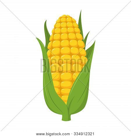 Vector Illustration Of A Funny Corncob In Cartoon Style.