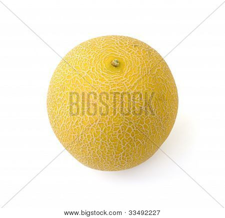 sweet yellow melon