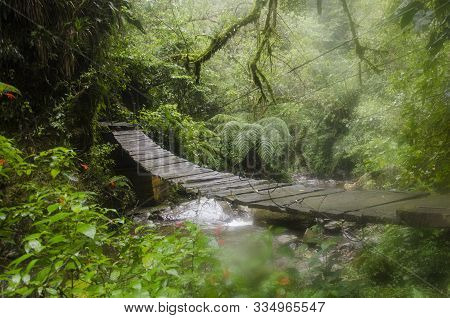 Wooden Planks Bridge Over A Watercourse In A Tropical Forest, In The Cocora Valley, In Quindio, Colo