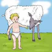 Small child standing on grass feeding a lamb poster
