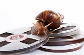 The snail creeps on a recorder tape on a white background poster