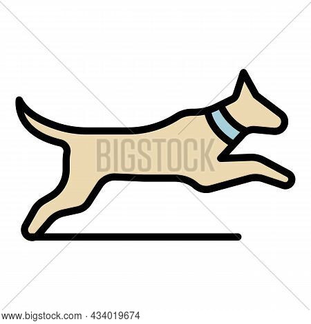 Jumping Dog Icon. Outline Jumping Dog Vector Icon Color Flat Isolated