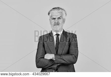 Blonde Hipster Dyed Beard Hair. Professional Office Manager. Boss In Stylish Clothes. Business Growt