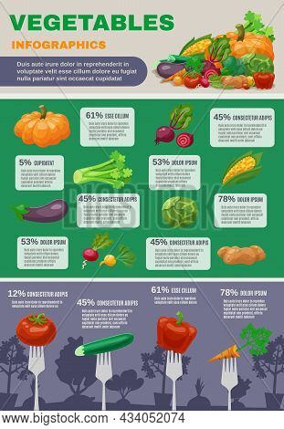 Vegetables Infographic Set With Pumpkin Cabbage Beetroot And Aubergine Flat Vector Illustration