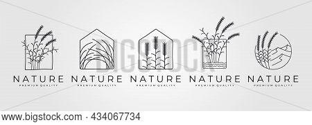 Set Of Nature Grass Minimal Vector Logo Symbol Illustration Design, Line Art Style