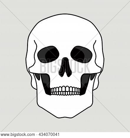Skull Bone Face. Skull Icon. Black And White Cartoon Smiling Cute Human Skeleton Head Isolated On Wh