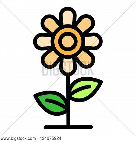 Flower Allergy Reaction Icon. Outline Flower Allergy Reaction Vector Icon Color Flat Isolated