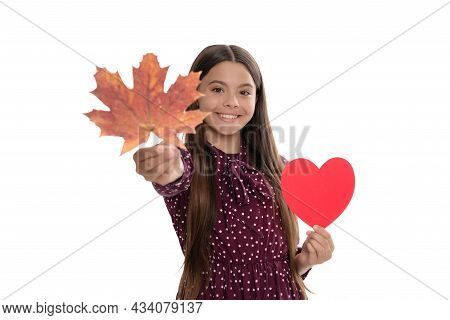Happy Teen Girl In Fall Season Giving Maple Leaf And Love Heart Isolated On White, Love.