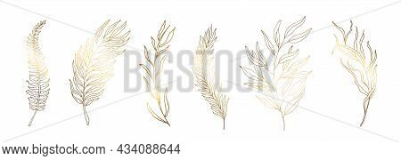 Set Golden Leaves. Silhouettes Of Golden Branches With Leaves. The Illustration Is Decorated In A Mo