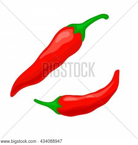 Pair Red Chili Pepper Vector Illustration. Isolated White Background. Seasoning For Cooking In Kitch