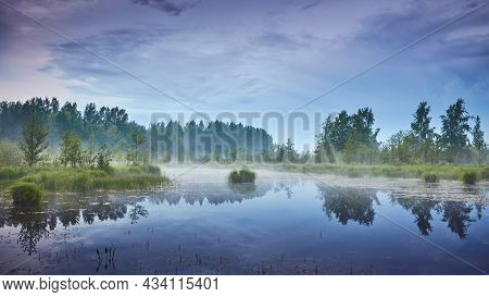 Foggy Summer Evening In Swamp Among European Nature Filled With Colorful Light.