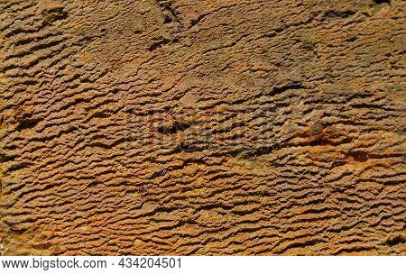 Orange Brick Texture Macro Closeup, Old Detailed Rough Grunge Textured Copy Space Background, Vertic