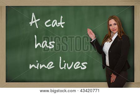 Teacher Showing A Cat Has Nine Lives On Blackboard