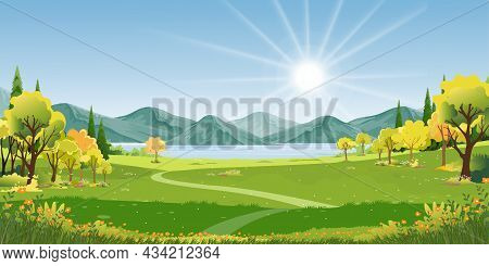 Spring Landscape In Village With Green Field And Sunset,vector Flat Cartoon Summer Rural Farmland Wi