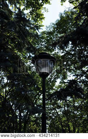 Garden Lantern On The Background Of Tree Crowns. Lighting Lantern. Background, Design.