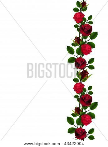 Seamless red roses pattern