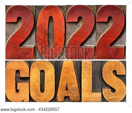 2022 goals banner - New Year resolution concept - isolated text in vintage letterpress wood type printing blocks
