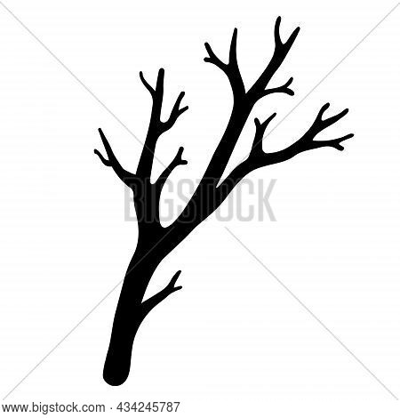 Tree Branch Vector Icon. Hand-drawn Doodle. Silhouette Of A Dry Leafless Twig. Botanical Sketch. Mon