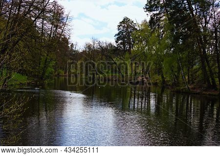 Picturesque Nature Landscape Of The Lake In The Green Forest. Trees Reflected In Tranquil Water. Spr