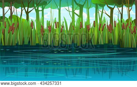 Summer Swampy Landscape. Flat Style. Shore A Quiet River Or Lake. Wild Overgrown Pond In The Shadow