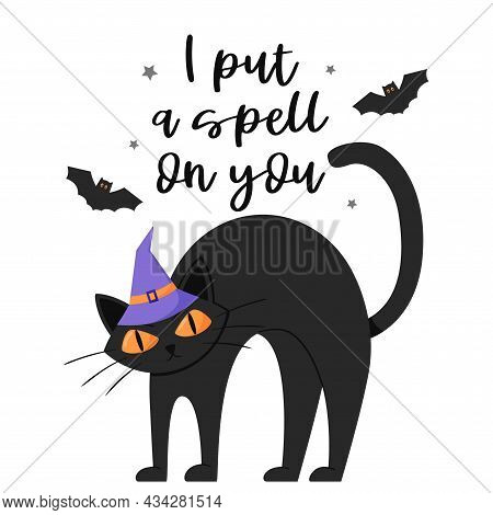 A Black Frowning Cat In A Hat Stands With Its Back Arched. Postcard With Hand Lettering - I Put A Sp