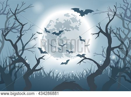Halloween Forest. Halloweens Foresty Horror Background With Fog Scary Trees Silhouettes And Bats In