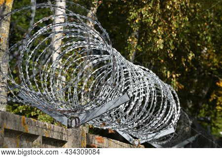Spiral And Coils Of Barbed Wire On Fence. Barbed Wire Against Thieves And Vandals. An Insurmountable