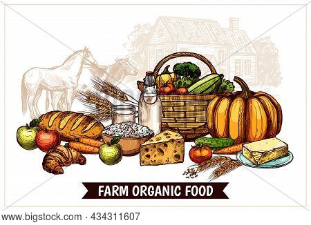 Ecological Farm Poster With Healthy Natural And Useful Products For Proper Nutrition Vector Illustra
