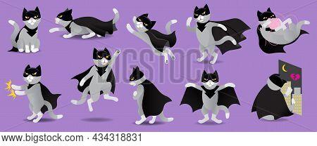 Set Of Superhero Or Villain Cat In Black Mask And Cloak