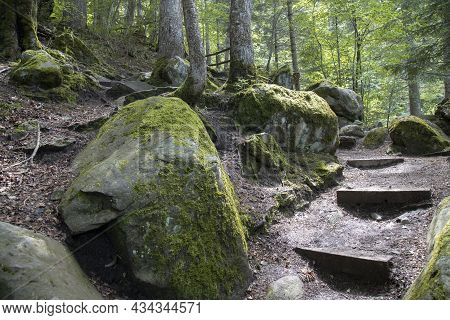 Landscape Showing Some Rocks And Trees In Aran Valley In Catalonia