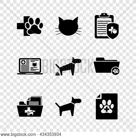 Set Veterinary Clinic, Cat, Clinical Record Pet, Medical Veterinary Folder, Dog And Certificate For