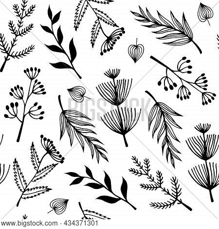 Flowers And Wild Herbs Seamless Vector Pattern. Hand-drawn Doodles. Twigs With Leaves, Flowers With
