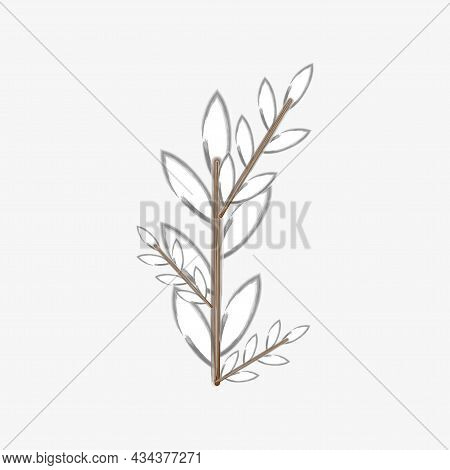 Willow Stem. Freehand Watercolor Picture. Realistic Design. Spring Tree. Wood Element. Vector Illust
