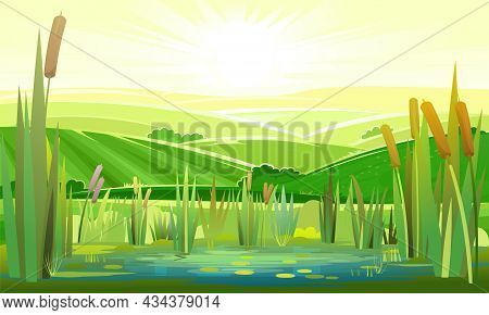 Landscape With A Swampy Shore Of A Lake Or River. Coast Is Overgrown With Grass, Reeds And Cattails.