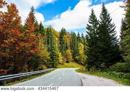 Nice paved road among picturesque autumn forest. Picturesque Julian Alps. Beautiful sunny autumn day. Charming pastoral. Green grassy lawns in mountain valley.  Travel to Slovenia.