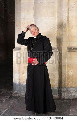 Mature cardinal checking is skullcap or zucchetta
