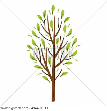 Spring Or Summer Stylized Tree With Green Leaves.
