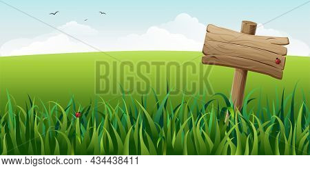 Wooden Sign In Grass On Field Illustration. Horizontal Green Summer Landscape With Signboard, Clouds