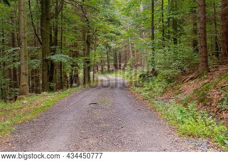 Karkonosze, Mountains In Poland. Unpaved Road On The Hillside, Hiking Trail. A Mixed Spruce Deciduou
