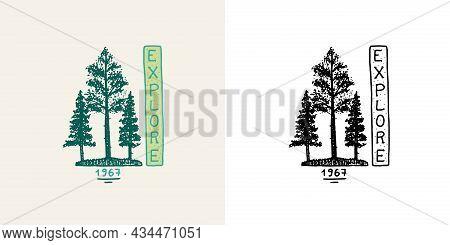 Christmas Trees Emblem. Explore Badge. Fir Forest. Engraved Hand Drawn In Old Vintage Sketch. Doodle