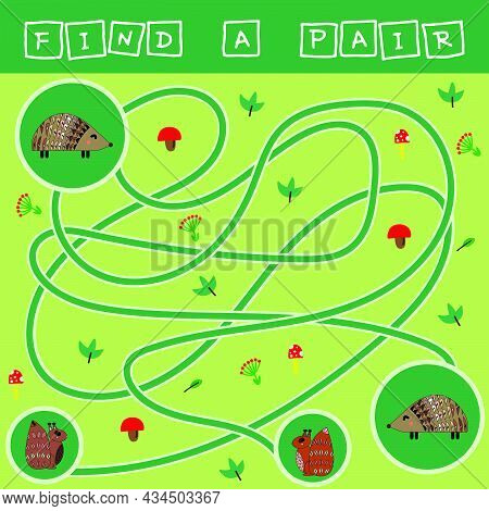 Developing Activity For Children - Labyrinth, Find A Pair Of Hedgehogs. Logic Game For Children.