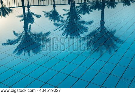 Selective Focus On Blue Reflection Of Palm Trees In Pool Water. Swimming Pool Without Visitors