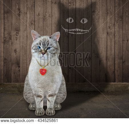 A Ash Cat Is Casting A Shade On A Wooden Fence. This Shadow Has A Scary Smile.